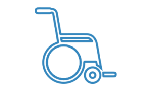 icon-disabili
